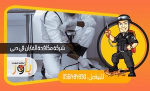 نصائح مهمه من شركة  باور لمكافحة الحشرات لضمان الحصول علي حياه صحية وبيئة خالية من الأمراض 0561484890